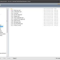 Shoutcast Server control panel file manager